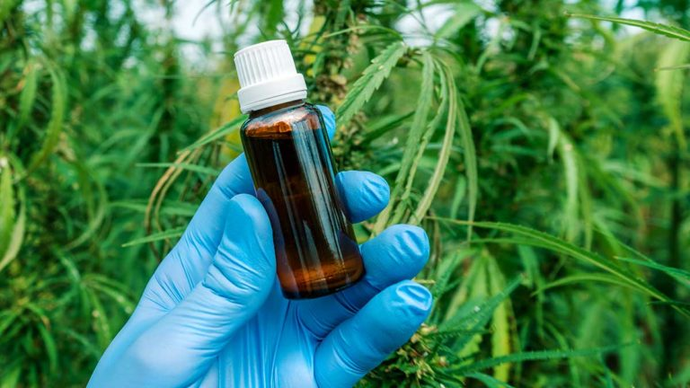 scientist holding cbc cannabinoid oil bottle close up